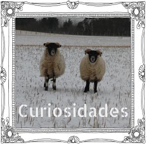 curiosidades2